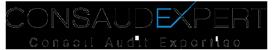 ConsAudExpert - Cabinet d'expertise comptable